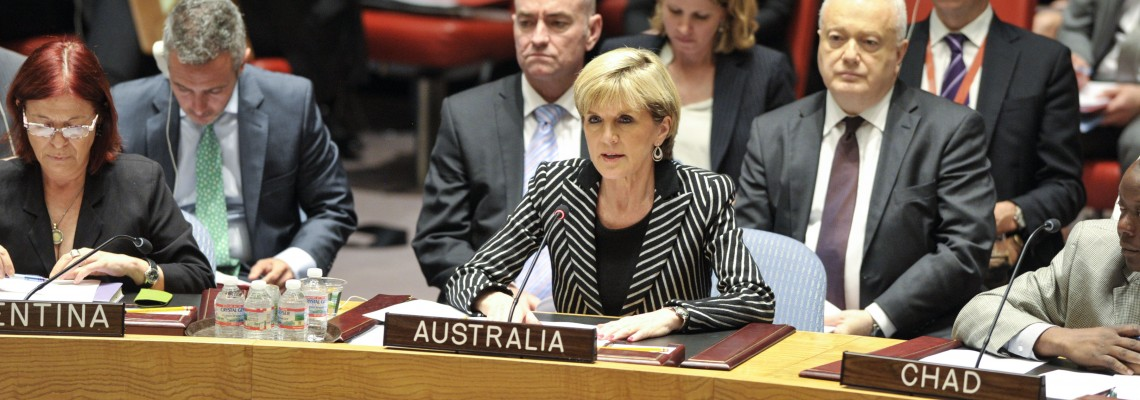 Security Council Meeting: Voted on resolution and discussed MH17